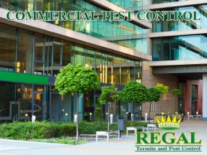 Regal Pest Control Commercial Pest Control Services