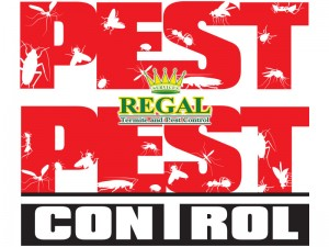 regal-pest-control-graphic-1