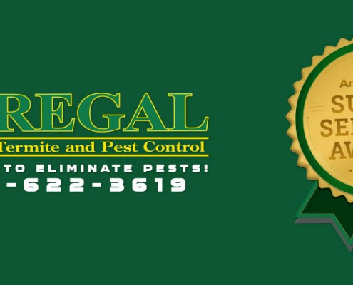 regal-pest-control-ocala-and-the-villages-slider-angies-2