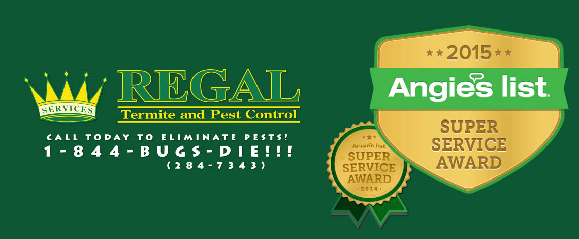 regal-pest-control-ocala-and-the-villages-slider-angies-3