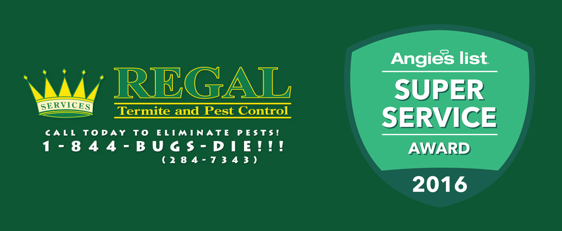 regal-pest-control-ocala-and-the-villages-slider-angies-44