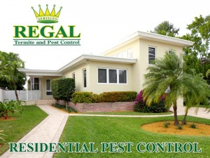 Regal Pest Control Residential Pest Control Services
