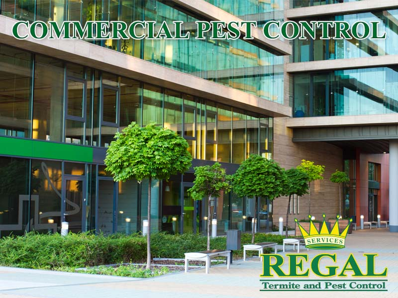 Regal Pest Control Commercial Services