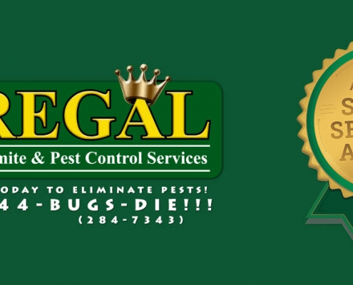 Regal Pest Control Earns Esteemed 2017 Angie S List Super Service Award